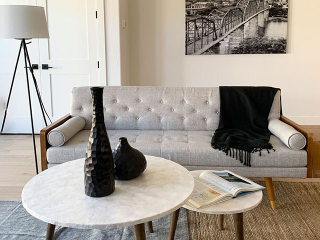 luxury house with carpets, furniture and view using home staging denver